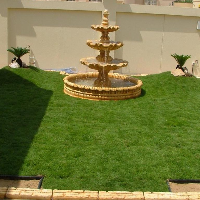 Cultivation Of Natural Grass-1