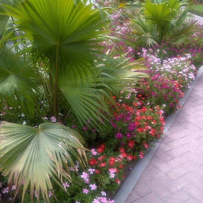 Garden Maintenance-2