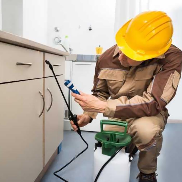 Pest Control Services-2