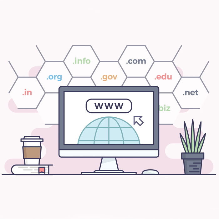 Domain Name Registration-2