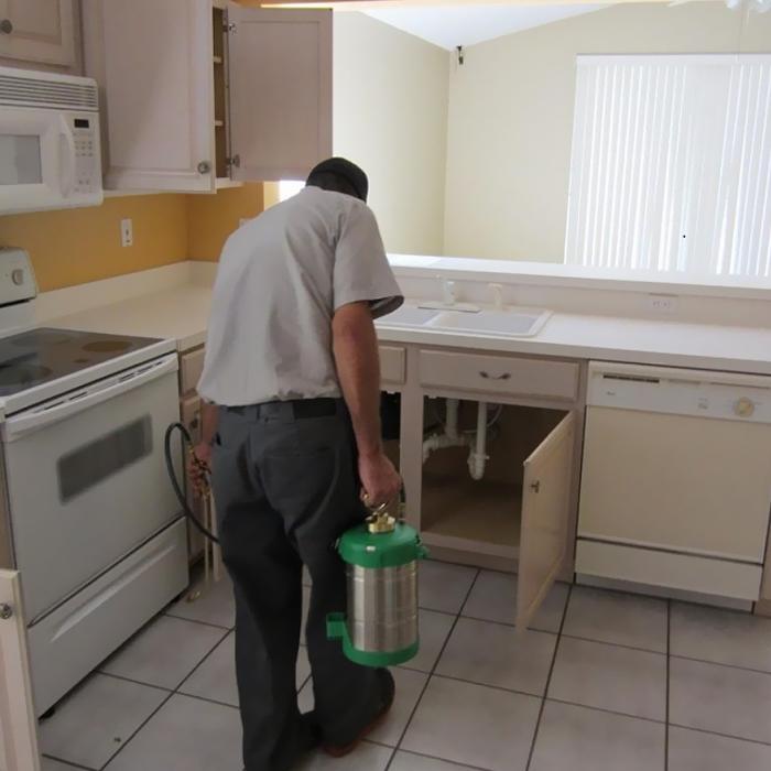 Pest Control Services-3