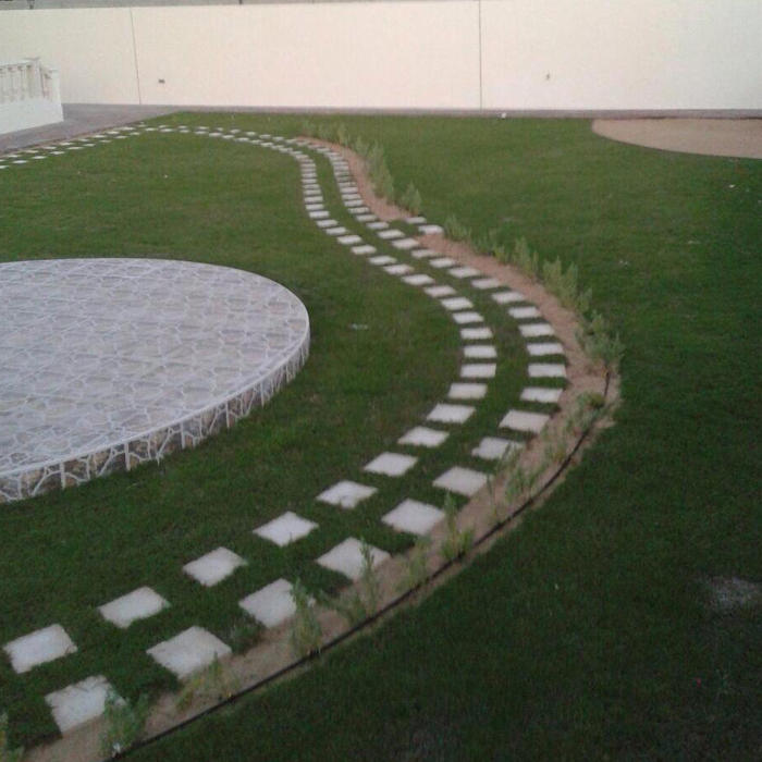 Cultivation Of Natural Grass-4