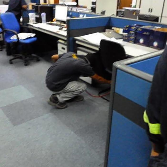 Pest Control Services-4