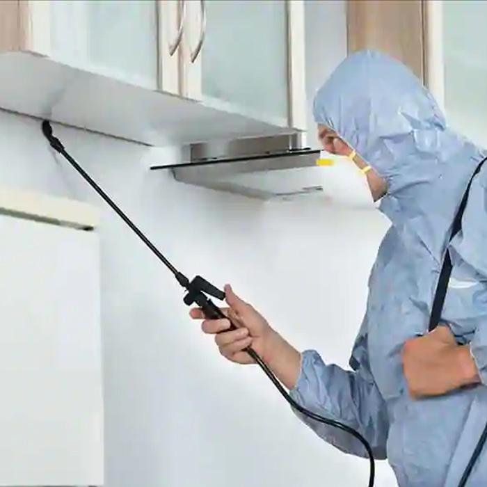 Pest Control Services-5