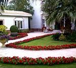 صيانة الحديقة