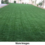 Cultivation Of Natural Grass