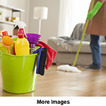 CLEANING HOUSES & OFFICES